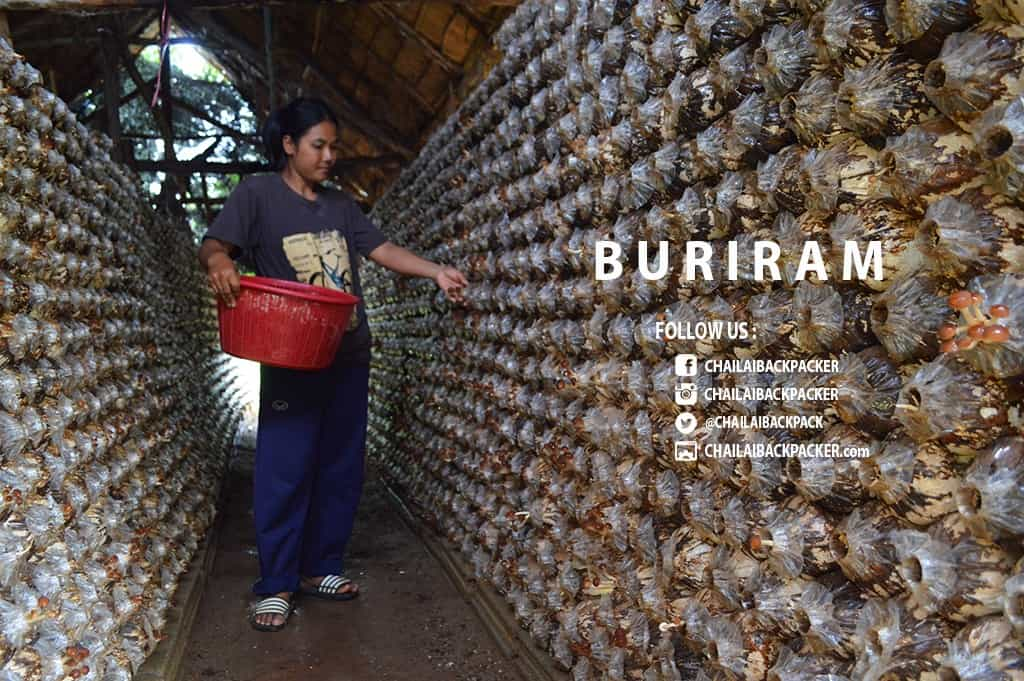 Subsomboon Buriram (31)